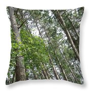The Northwoods Throw Pillow