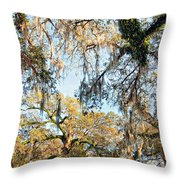The Oaks Of City Park Throw Pillow