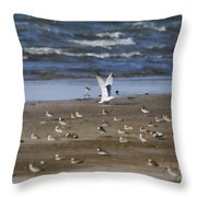 The Odd One Out V2 Throw Pillow