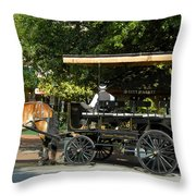 The Old City Market Throw Pillow