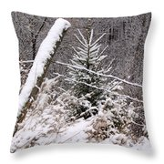 The Old Fence - Snowy Evergreen Throw Pillow
