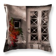 The Old Mailbox Throw Pillow