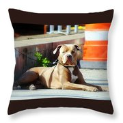The Old Soul Throw Pillow