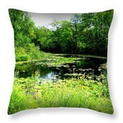 The Ole Fishing Hole Throw Pillow