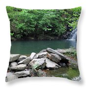 The Ole Swimming Hole Throw Pillow