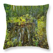 The Ongoing Struggle  Throw Pillow