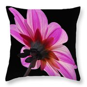 The Other Side Of The Floral Throw Pillow
