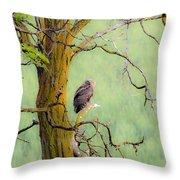 The Owls Overlook Throw Pillow