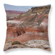 The Painted Desert  8013 Throw Pillow