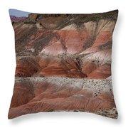 The Painted Desert  8018 Throw Pillow