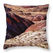 The Painted Desert  8023 Throw Pillow