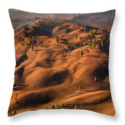 The Painted Dunes Throw Pillow