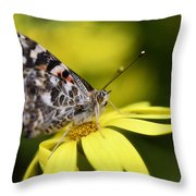 The Painted Lady And The Daisy  Throw Pillow