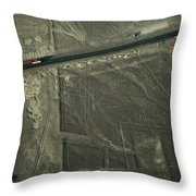 The Pan-american Highway Cuts Throw Pillow