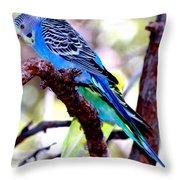 The Parakeet Throw Pillow