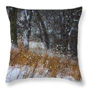 The Pasture Lane Throw Pillow