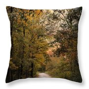 The Path Less Traveled 2 Throw Pillow