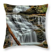 The Path Of Least Resistance Throw Pillow