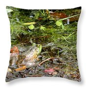 The Patient Frog Throw Pillow