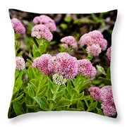 The Pink Cure Throw Pillow