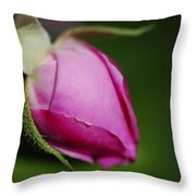 The Pink Rose Bud Throw Pillow