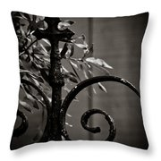 The Point Throw Pillow by Jessica Brawley