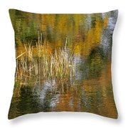 The Pond Shallows Throw Pillow