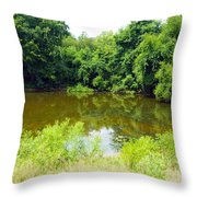 The Pond View Throw Pillow