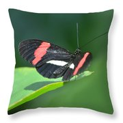 The Postman Takes Flight Throw Pillow