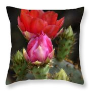 The Prickly Beauty  Throw Pillow