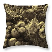 The Produce Of The Earth In Sepia Throw Pillow