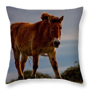 The Przewalski Horse Equus Przewalskii Throw Pillow