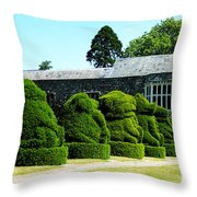 The Queens Beasts Throw Pillow