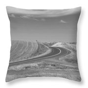 The Quiet Road Throw Pillow