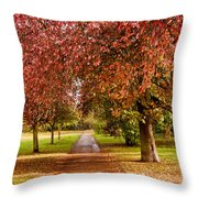 The Red Path Throw Pillow