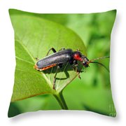 The Rednecked Bug- Close Up 2 Throw Pillow
