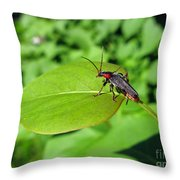 The Rednecked Bug On The Leaf Throw Pillow