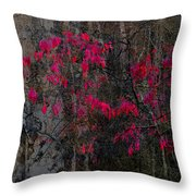 The Resolution Of Fall Throw Pillow