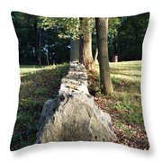 The Road Leading Home Throw Pillow