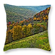 The Road To Glady Wv Painted Throw Pillow
