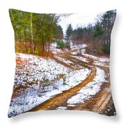 The Road To Spring Throw Pillow
