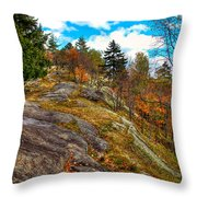 The Rocks Above Eagle Bay Throw Pillow