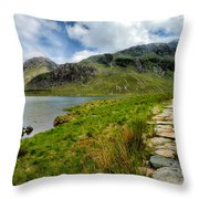 The Rocky Path Throw Pillow