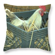 The Rooster That Laid A Golden Egg Throw Pillow
