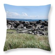 The Rugged Coast Throw Pillow