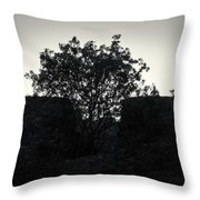 The Ruins Of The Castle Of Ali Pasha In Bw Throw Pillow