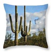 The Saguaros  Throw Pillow