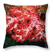 The Scarlet Soft Coral. Similan Islands Throw Pillow