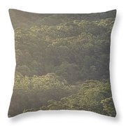 The Schlerophyll Forest Canopy Throw Pillow