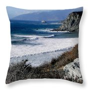 The Sea Squirrel Throw Pillow